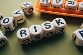 Risk Dice